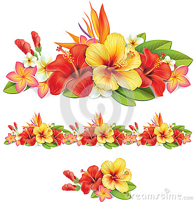 Garland of tropical flowers