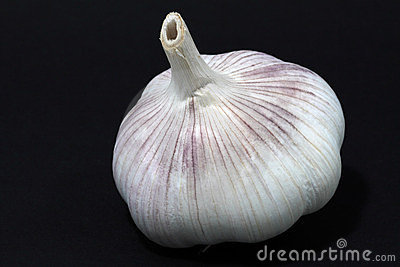 Garlic on a back background with shades