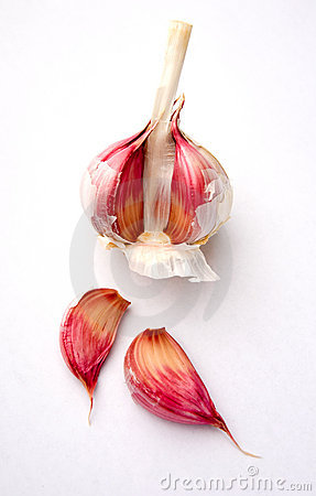 Garlic bulb and cloves