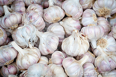 Garlic bulbs at a market
