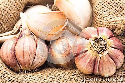 Garlic in canvas sack