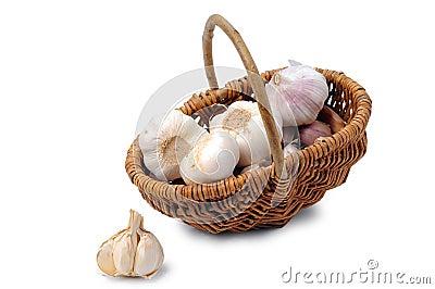 Garlic heads in basket