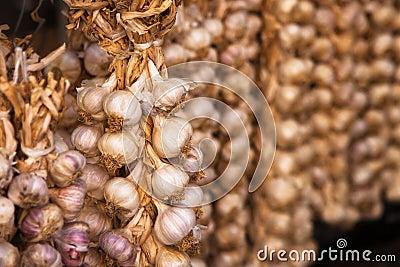 Garlic pigtails