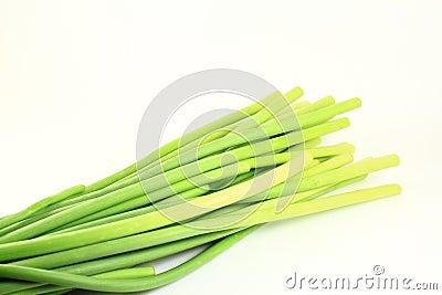 Garlic Stem