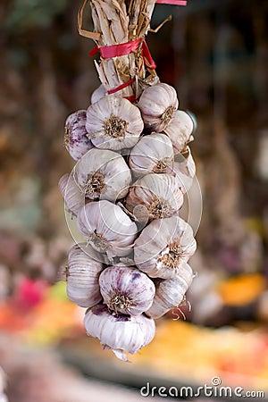 Free Garlic String Royalty Free Stock Photo - 15677725