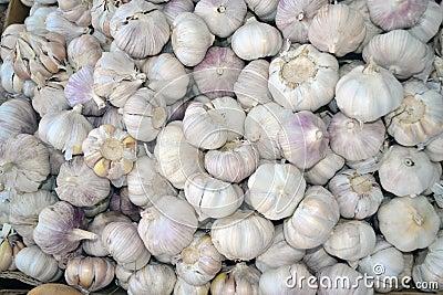 Garlic Texture