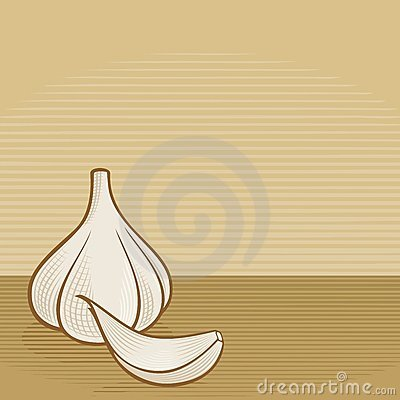 Garlic woodcut