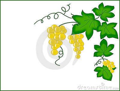 Garnish with clusters of grapes.