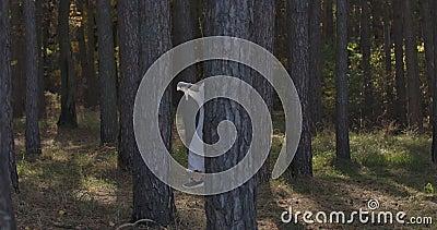 Garota caucasiana feliz correndo entre as árvores da floresta de verão e sorrindo Misteriosa mulher independente à luz video estoque
