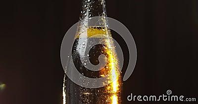 Garrafa da cerveja fria em um fundo preto Gerencie lentamente condensate vídeos de arquivo