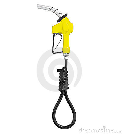 Gas Pump Hose II