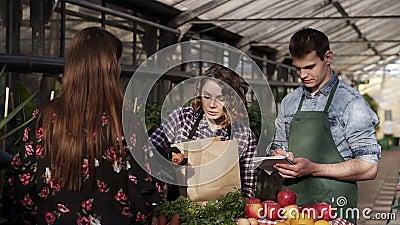 Gastfreundliches Verkäufer mit Vorschürze verkaufen Bio-Lebensmittel an Kunden im Gewächshaus Frau packt Grün zu einer stock video footage