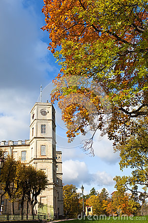 Gatchina,bright autumn tree in park near a palace