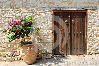 Gate and flower in pot