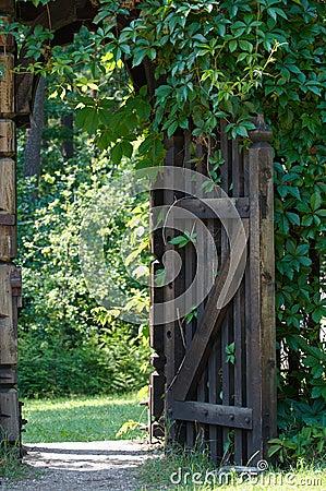 Gate in green