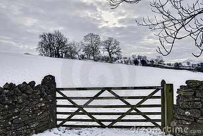 Gate in wintry countryside