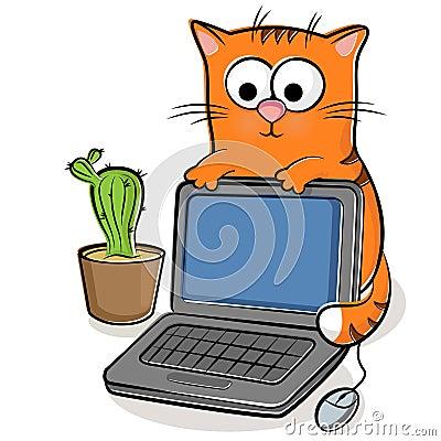 Gato agradable con la computadora portátil