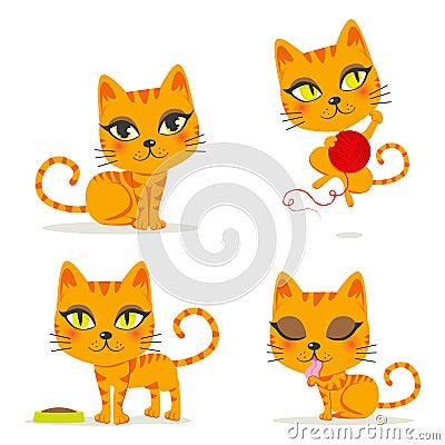 Gato de Tabby anaranjado