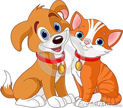 Gato e cão