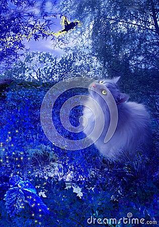 Gato y pájaro de la hada en la noche