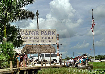 Gator park Editorial Stock Image