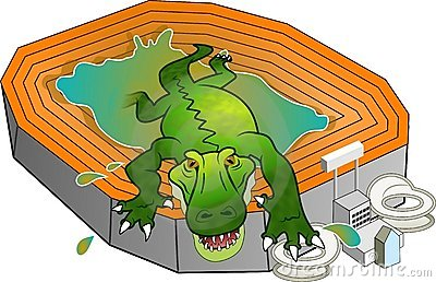 Gator Stadium