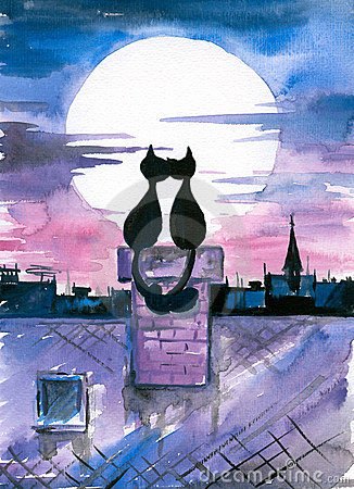 Gatos no amor.