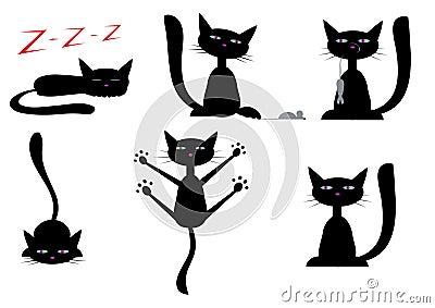 Gatos pretos