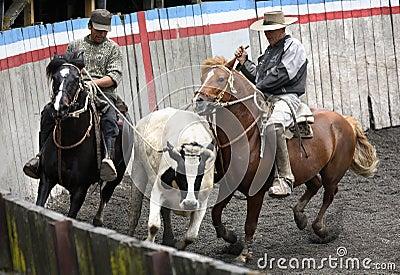 Gauchos - Puerto Montt - Chile Editorial Image