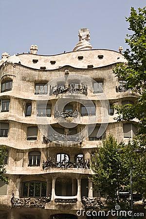 Gaudi domowy s