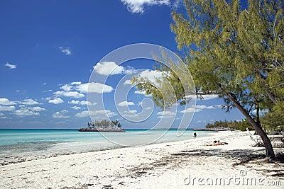 Gaulding Cay Snorkeler