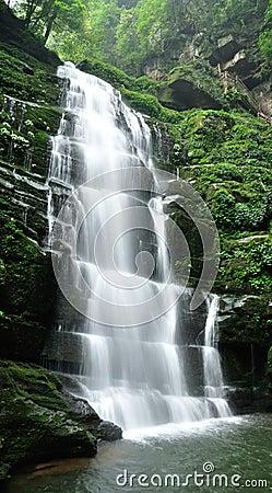 Gauze of falls