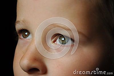 Gazing Eyes