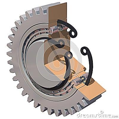 Gear & Bearing Cutaway