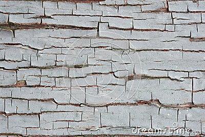 Gebarsten grijze verf op de raad achtergrond stock foto afbeelding 64295259 - Grijze verf ...