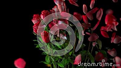 Gebroken boeket van rozen vector illustratie