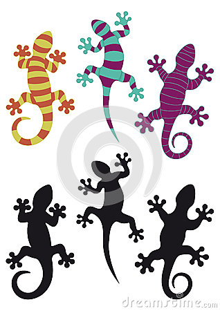 Free Gecko Royalty Free Stock Images - 27360969
