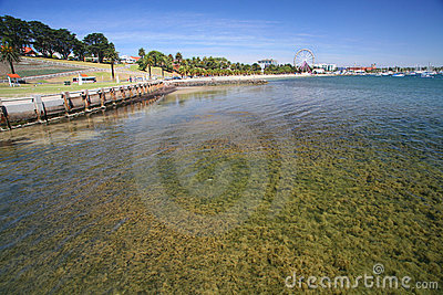 Geelong Park Coast Australia