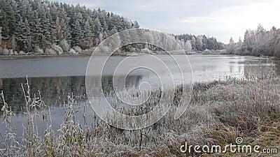 Gel de matin d'octobre sur l'étang de moulin Le village Bugrovo, Pushkinskie sanglant banque de vidéos