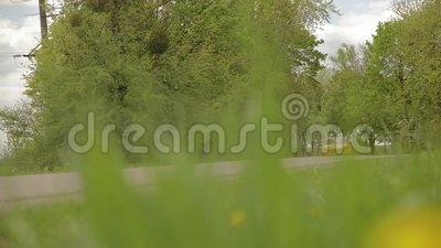 Gelb-orangees Auto des Sports bewegt sich entlang eine sch?ne Gasse mit B?umen und flachen Reifen der B?sche 07 05 Ukraine 2019 L stock video