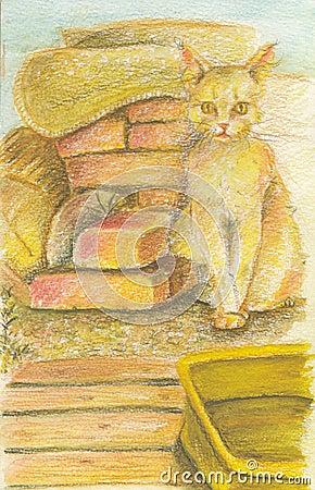 Gelbe Katze