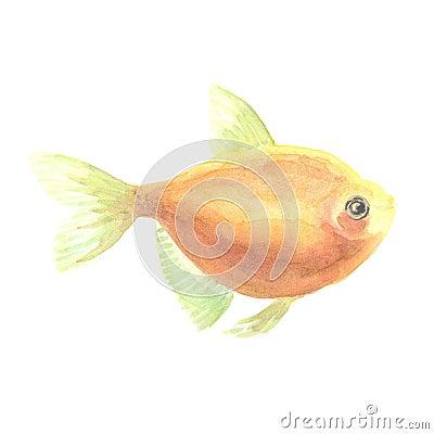 Gelbe kleine fische stock abbildung bild 71217089 for Kleine fische
