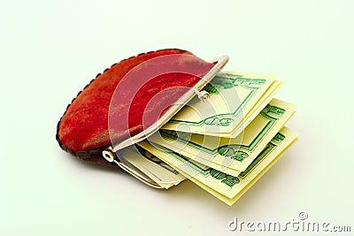 Geldbeutel voll Dollar