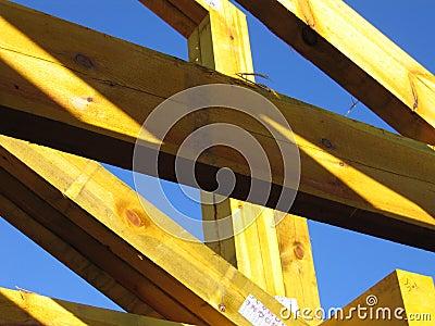 Gele Bundel
