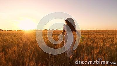 Gelukkig meisje in witte kleding met lang ontwikkelend haar die een gebied met gouden tarwe bij zonsondergang doornemen Langzame  stock footage