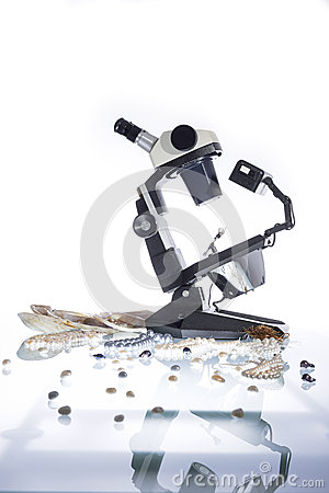 Free Gemologist And Microscope Royalty Free Stock Photo - 36764045