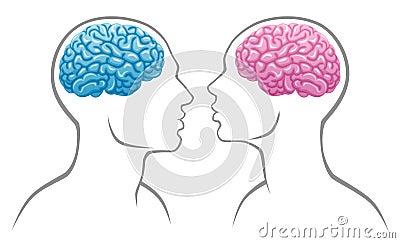 Gender brain