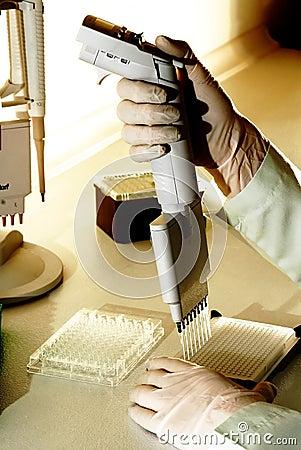 Free Gene Laboratory Stock Photos - 9041693