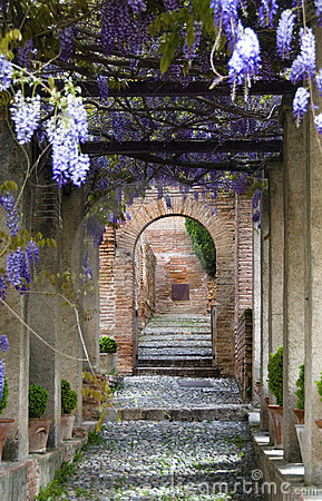 Free Generalife Gardens Royalty Free Stock Images - 10295519