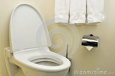 Generic toilet seat and bowl